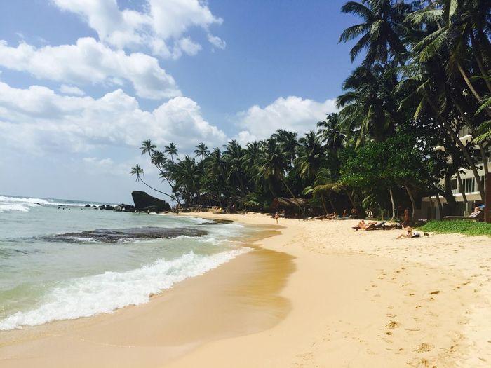Sri Lank Sri Lanka Sri Lanka Travel Sri Lanka 🇱🇰 SriLanka Beach Beauty In Nature Palm Tree Sand Sea Shore Sri Lankan Tranquil Scene