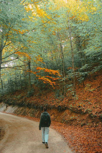 Rear view of person walking on footpath during autumn