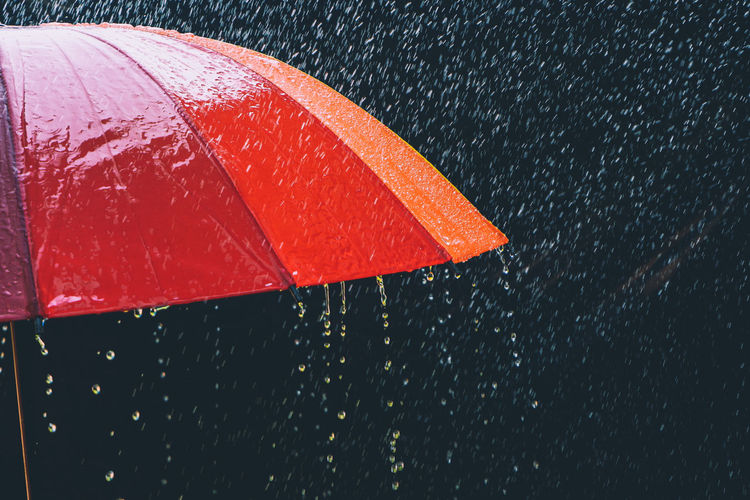 Close-up of wet red umbrella during monsoon