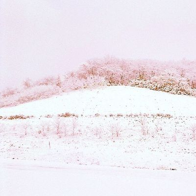 Beauty In Nature Clear Sky Cold Temperature Day Frozen Landscape Nature No People Outdoors Pink Color Scenics Sky Snow Snowing Tranquility Tree Weather Winter