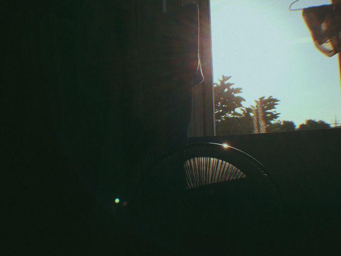 Sunlight Pan Film Gudakcam