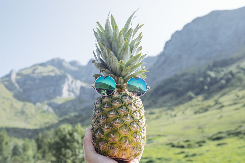 Pineapple Ananas Beauty In Nature Focus On Foreground Freshness Green Color Holding Human Hand Mountain Nature One Person Outdoors People Real People Done That.