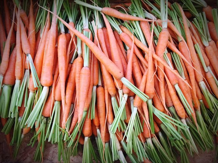 bAbY cARRot... Vegetable Freshness No People Green Color Food Market Close-up Day Outdoors Birder'smarket Farmermarket Babycarrot Carrot Orangecolour Carrotisorange