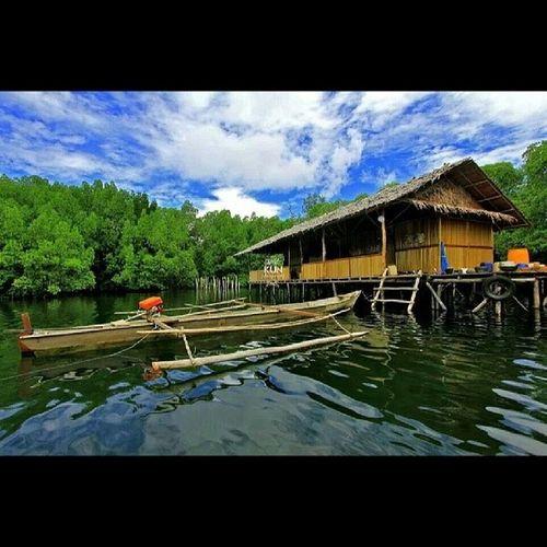 I love INDONESIA Raja -ampat Island Kun_fotografi sea lovethispic diving sunnydays