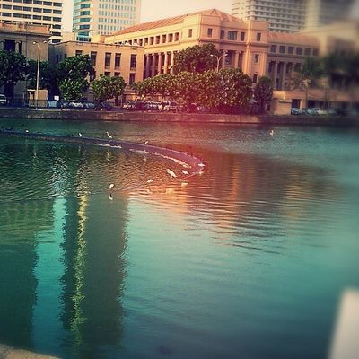 Beauty of the lake captured!! Oldparliament Colombo LoveSL :)