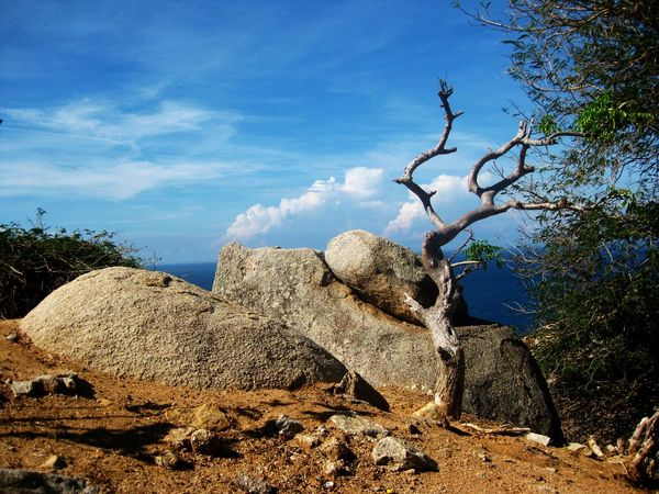 Beautiful Day Beauty In Nature Blue Cloud - Sky Landscape Mui Dinh Lighthouse Nature Outdoors Phan Rang, Ninh Thuan Rock - Object Sky Stone Travel Destinations Travel Photography Tree Vietnam