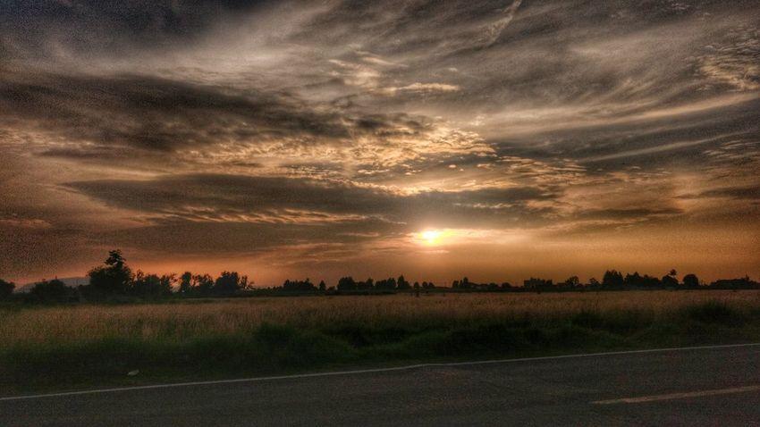Lerma Taking Photos Atardecer HDR Sunset Motog4plus Mexico