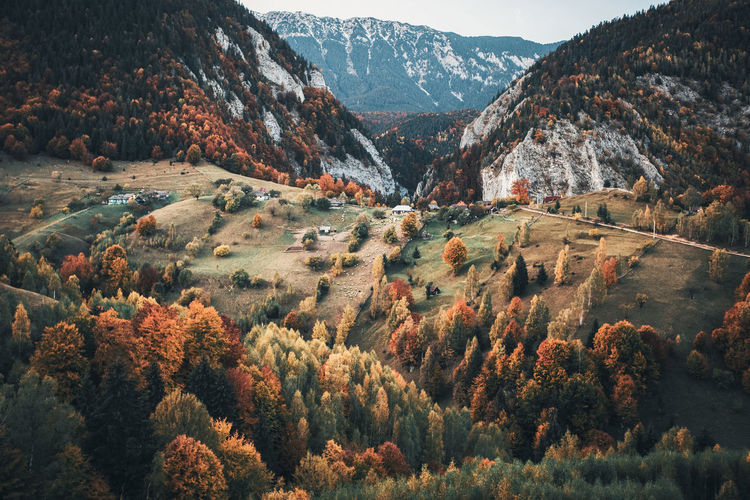 Autumn Autumn Colors Autumn Leaves Landscape_Collection Nature Nature Photography Romania The Week On EyeEm Beauty In Nature Day Fall Landscape Landscape_photography Mountain Mountain Range Mountains Nature Nature_collection No People Outdoors Scenics Sky Tranquil Scene Tranquility Tree Perspectives On Nature Fresh on Market 2017 Be. Ready.