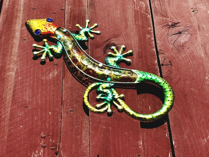 Close-up of dragon on wooden door