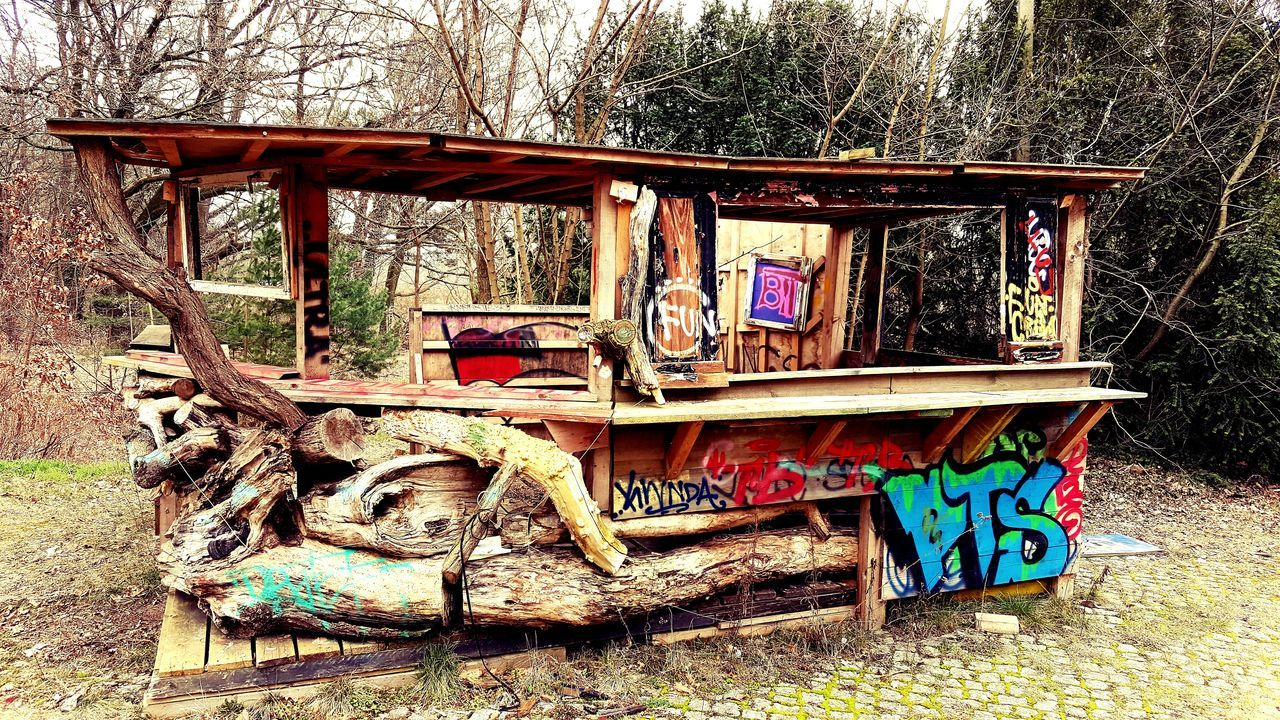 tree, abandoned, day, plant, no people, old, nature, wood - material, obsolete, mode of transportation, transportation, outdoors, land, architecture, run-down, field, forest, land vehicle, built structure, damaged, deterioration