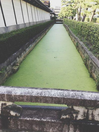 Kyot kyoto