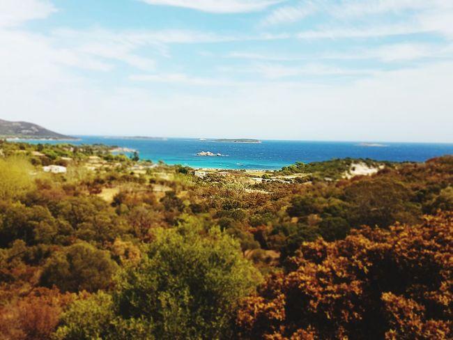 Korsika Ocean Dream