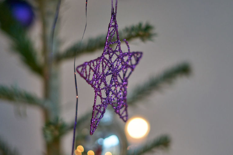 Beauty In Nature Branch Christmas Christmas Decoration Christmas Tree Close-up Day Focus On Foreground Fragility Growth Hanging Nature No People Outdoors Purple Tree