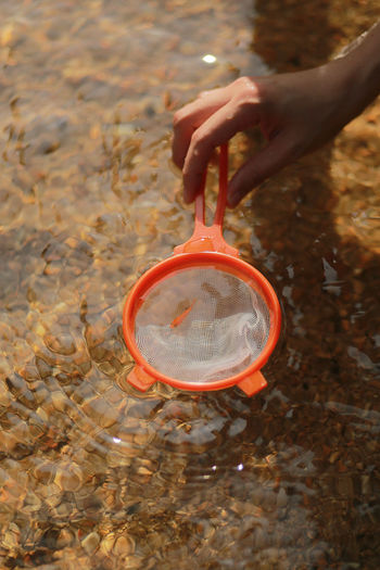 Cropped hand of person fishing with orange strainer