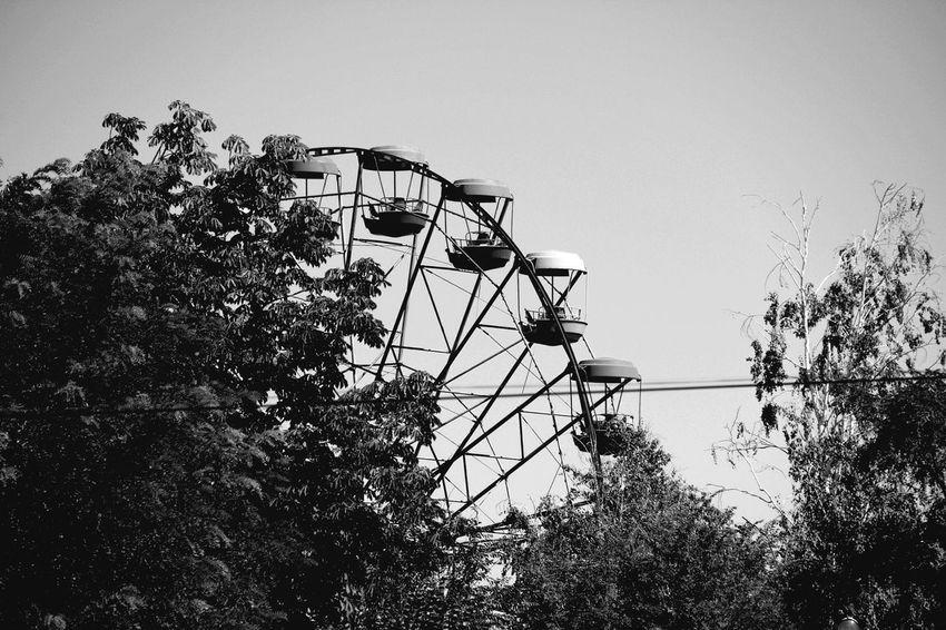 парк Clear Sky Sky EyeEm City Blak And White черно-белое фото Eyeemmonochrome Park Trees Monochrome