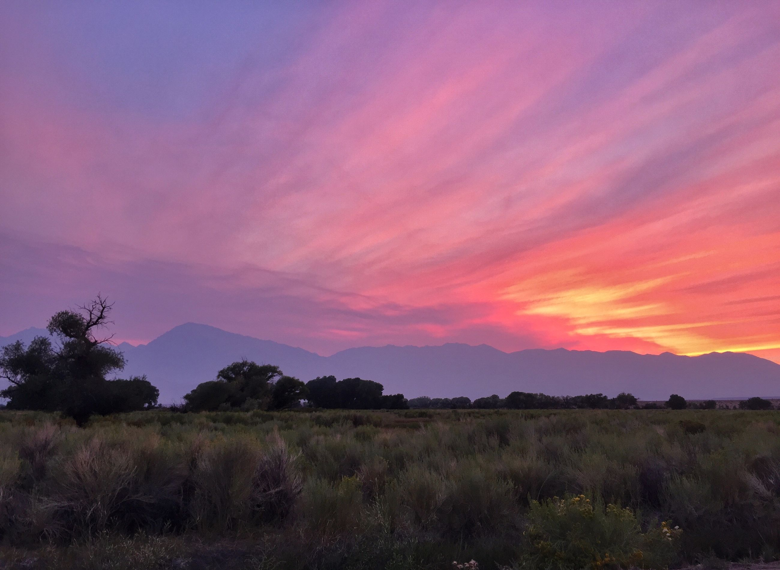sunset, tranquil scene, tranquility, scenics, sky, landscape, beauty in nature, orange color, nature, tree, field, idyllic, cloud - sky, non-urban scene, cloud, grass, growth, mountain, remote, plant