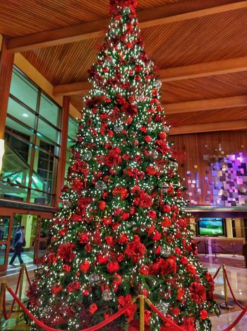 hotel lobby christmas tree Taking Photos EyeEm Gallery Seasons Greetings Christmas Time Christmas Tree Christmaslights Christmas Decorations Christmas Balls Christmas Lights Christmas Ornaments Christmastime Happy Holidays! Let's Do It Chic! Eye4photograghy My Photography Christmas Around The World