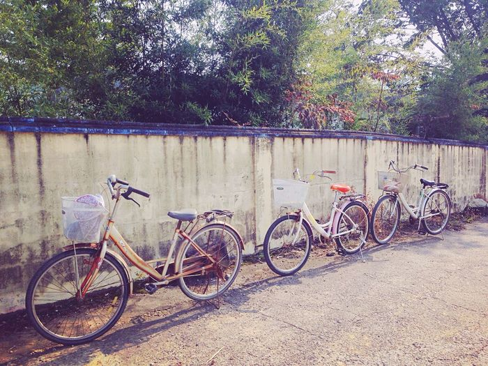 Photos That Will Restore Your Faith In Humanity Grandmoter's Bicycle First Eyeem Photo