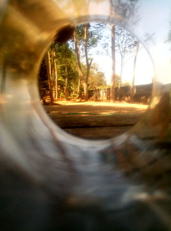 Inside the glass Cellularphotography Meizuindonesia Meizuphoto Meizum3s Indonesiabanget Trawas Morning Tree Sunset Rural Scene Sunlight Gold Colored Multi Colored Defocused Ethereal Forest Road