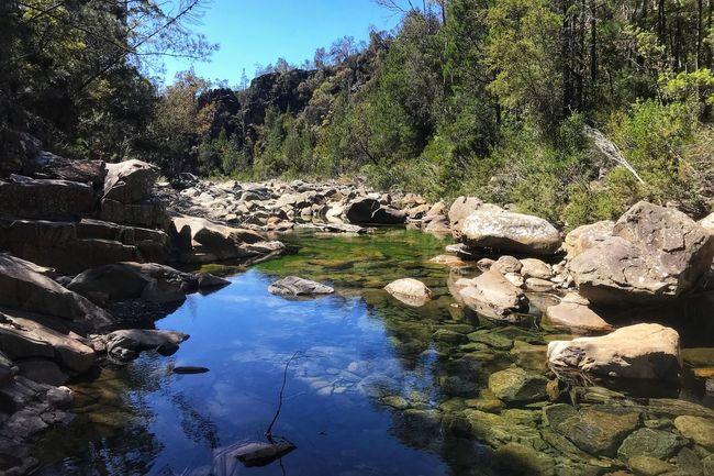 Douglas Aspsley National Park, Tasmania Tasmania Tree Rock - Object Nature Water Tranquil Scene Day Tranquility Outdoors Beauty In Nature Scenics Landscape