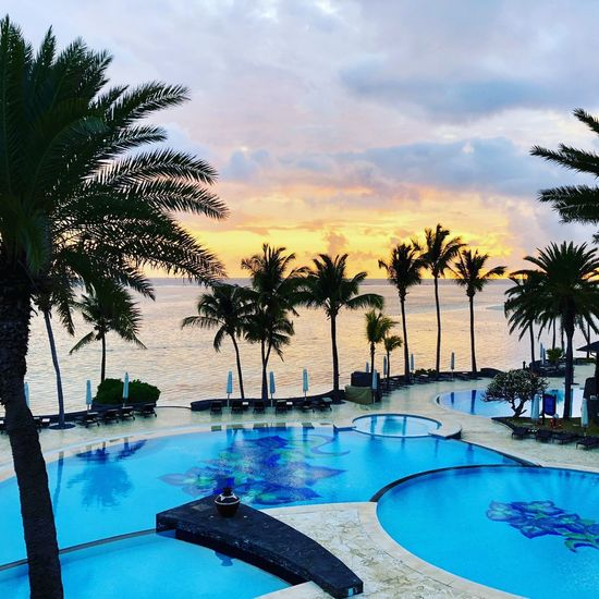 Sunrise at the Residence Tree Swimming Pool Water Pool Plant Cloud - Sky Nature Sky Palm Tree Sunset Scenics - Nature Beauty In Nature Tranquility Tranquil Scene No People Tropical Climate Tourist Resort Poolside Outdoors