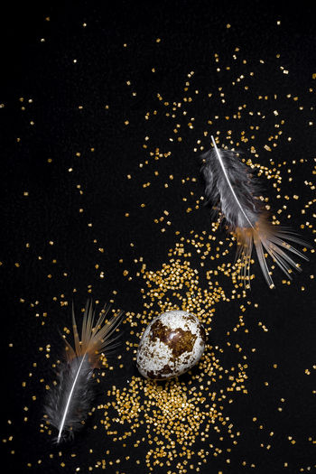 View of firework display over black background