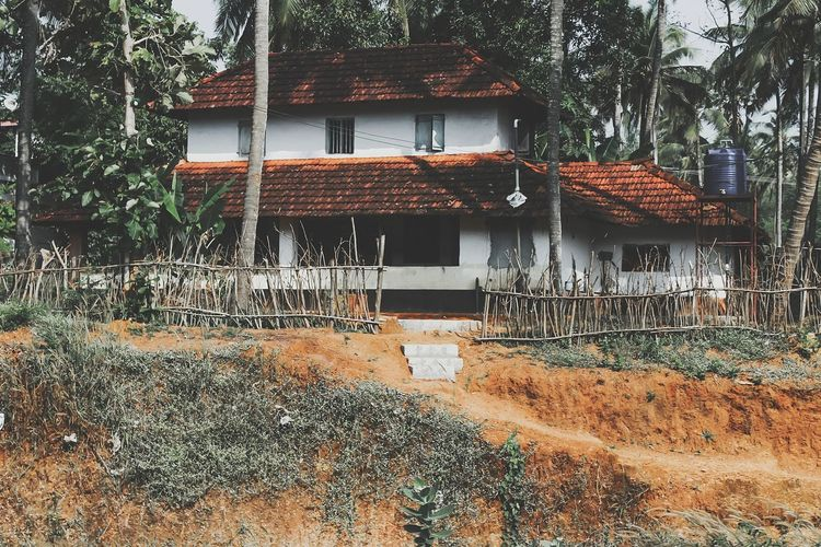 tiled roof House Kerala Kerala Tourism Tourism Farm Farm House Grass Close To Nature Nature Tree Water Architecture Building Exterior Sky Built Structure Tiled Roof  Rooftop Residential Structure Human Settlement TOWNSCAPE Housing Settlement Residential District Exterior