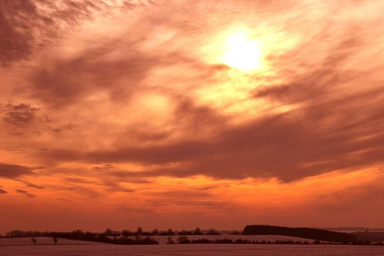 Sundown No People Landscape Cloud - Sky Scenics Outdoors Nature Beauty In Nature Storm Cloud Sky Day Winter 2017 January 2017 How's The Weather Today? Dramatic Sky Tranquility Snowing Cold Temperature Tree TreePorn Travel Destinations Wartberg Winter Snow Silhouette