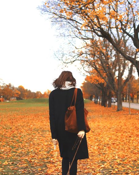 On a leash 🐾 Autumn One Person Leaf Nature Young Adult Change Orange Color Tree Walking Real People Young Women Three Quarter Length Field Outdoors Rear View Lifestyles Standing Long Hair Casual Clothing Leisure Activity Dogwalk Strolling Autumn Colors Autumn Leaves Fresh On Market 2017