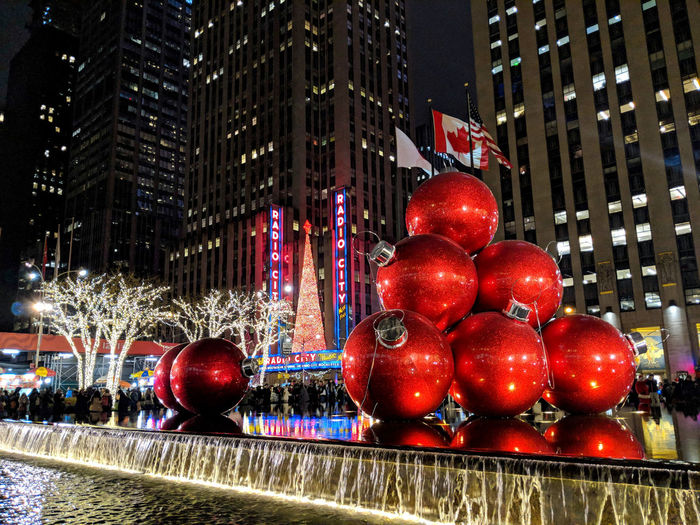 Red berries in city at night