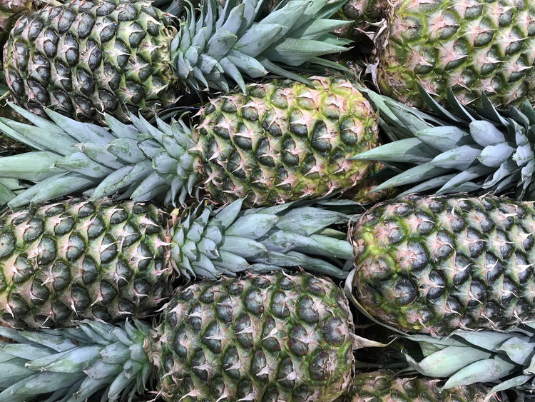 Tropical Pineapple Background Artichoke Day Food Food And Drink For Sale Freshness Green Color Healthy Eating Market No People Outdoors Retail  Vegetable