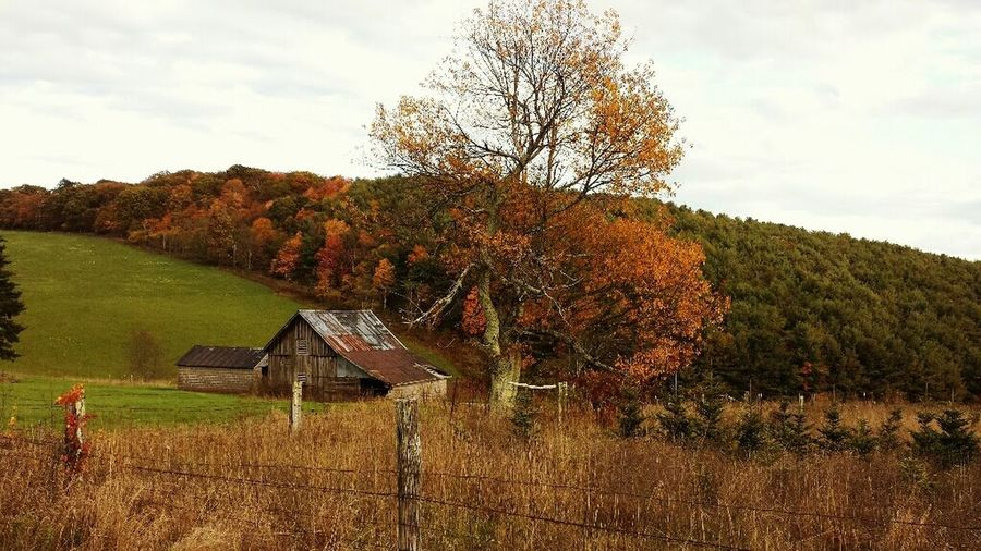 Old Barn In The Mountains No People Landscape Nature Tranquil Scene Outdoors Beauty In Nature Autumn Portrait Of America Outdoor Photography Time To Reflect Farmland