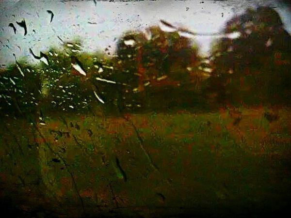 It's raining day...