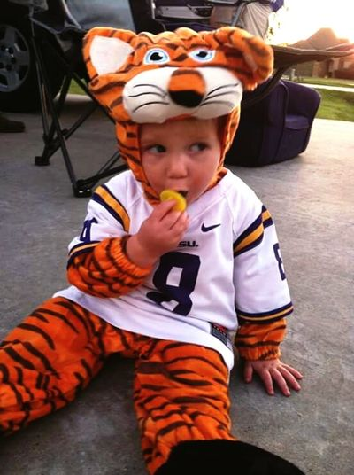 LsuTigers GeauxTigers Cute♡ Cute Baby Tiger Love Tiger-love LSU Louisiana BatonRouge Geaux Tigers