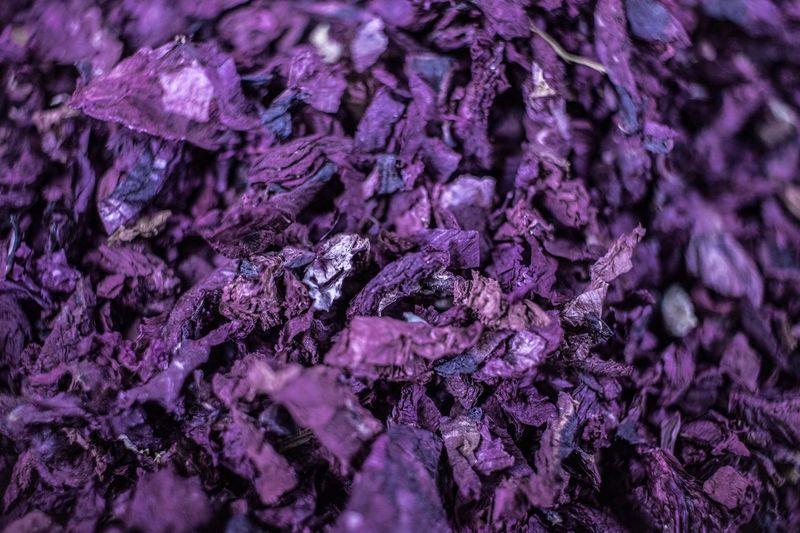 Full frame shot of purple vegetable
