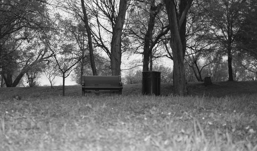 Empty bench by garbage can on grassy field at park