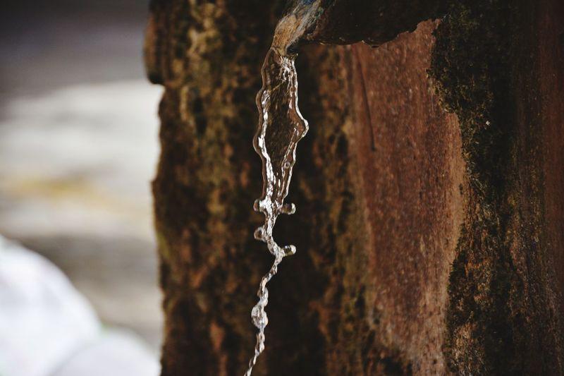 No People Water Wood - Material Outdoors Day Close-up Nature Fontain Aix-en-Provence Aixenprovence Aix En Provence