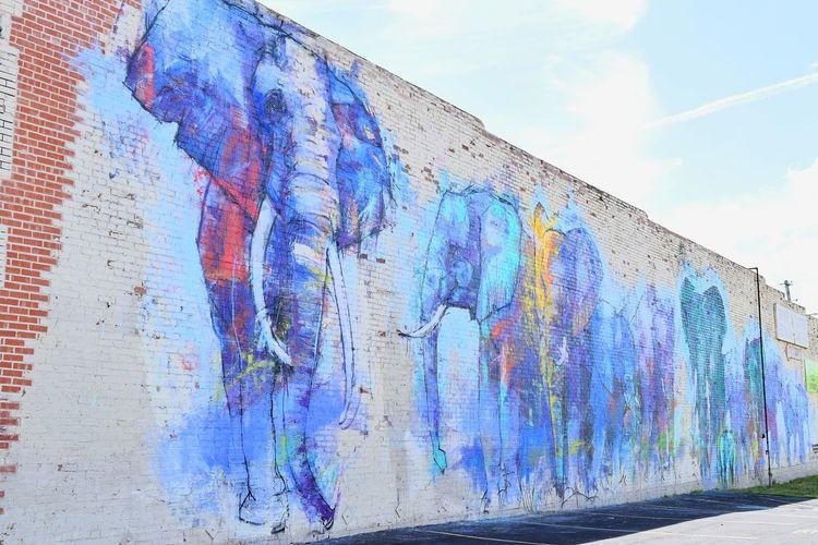 Watercolor Street Art Graffiti Art Dallas Deep Ellum