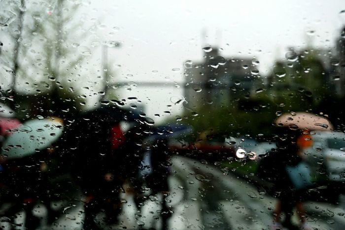 Rany Rany Day Rain Raindrops RainDrop Student Student Life Unbrella Unbrellas Looking At Camera