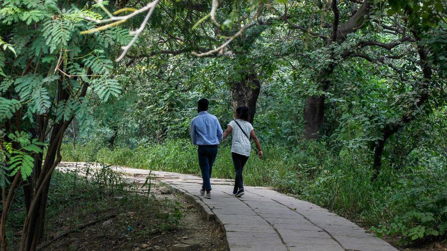 Rear view of women walking on footpath in forest