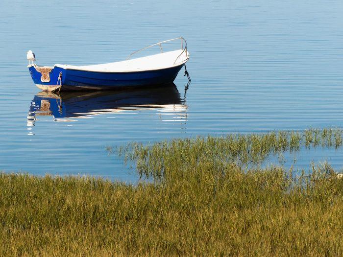Boat moored on lake
