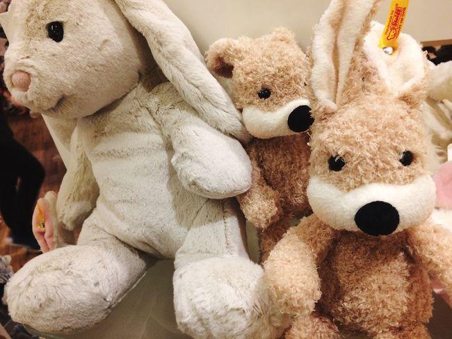 Teddy Bear Stuffed Toy Toy Animal Representation Close-up Bear Indoors  Childhood Stuffed Day