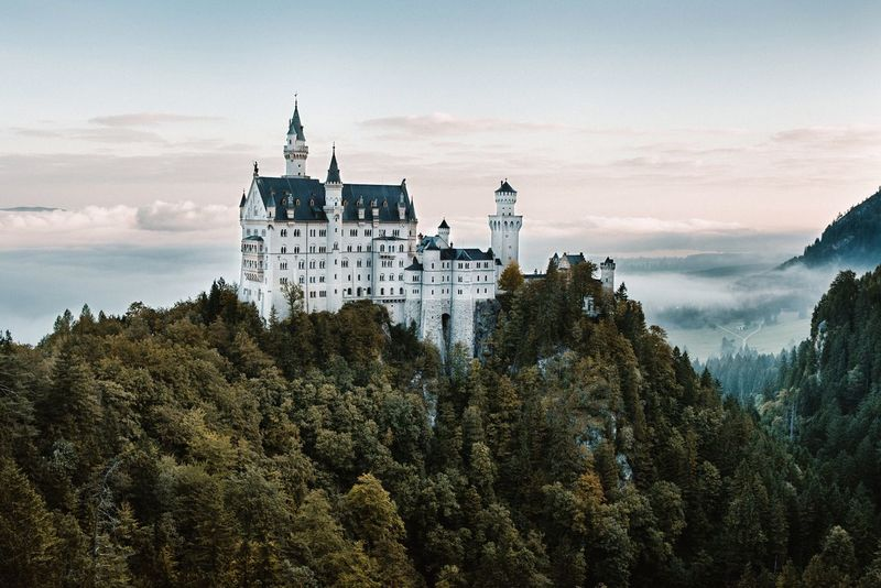 - Castle Neuschwanstein - Neuschwanstein Castle Mountain Clouds Moody Sky Mood Architecture Trees Travel Destinations Built Structure Outdoors Nature Beauty In Nature Morning Light Morning Place Of Worship Tree EyeEm Best Shots EyeEm Best Edits No People Nature Explore Lost In The Landscape