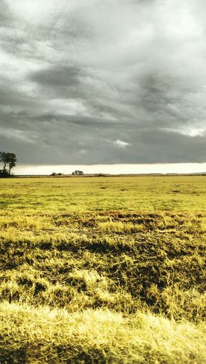 Wide Open Spaces Stormy Skies Gray And Yellow Cloudy Day