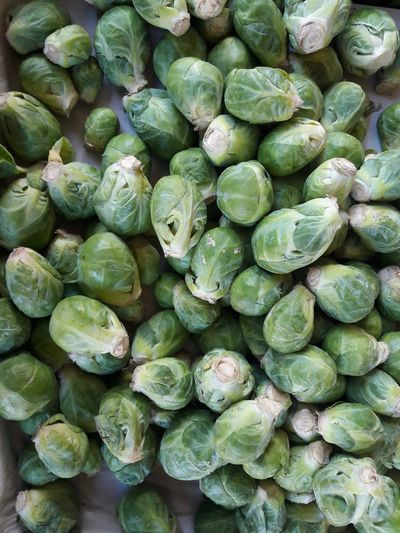 cabbage sprouts