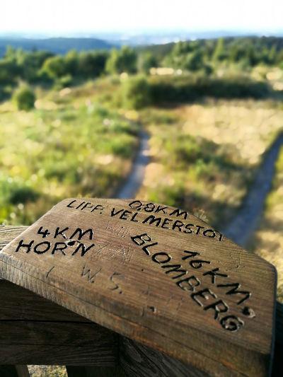 Aussichtsplattform Horn-Bad Meinberg Leopoldstal Velmerstot Wanderlust Ausflugsziel Aussichtsturm E1 Eggegebirge Eggeturm Feldrom Sandebeck Veldrom