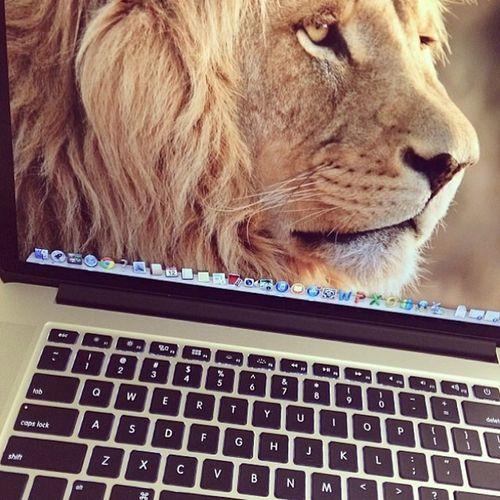 Mon Lion 3chiri