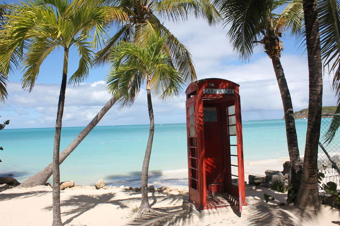 Red Telephone Booth on Antigua Antigua Beach Beauty In Nature British Telephone Booth British Telephone Box Caribbean Day Horizon Over Water Nature No People Outdoors Palm Tree Red Pay Phone Red Telephone Booth Sand Scenics Sea Sky Sunlight Tree Tree Trunk Tropical Paradise Water