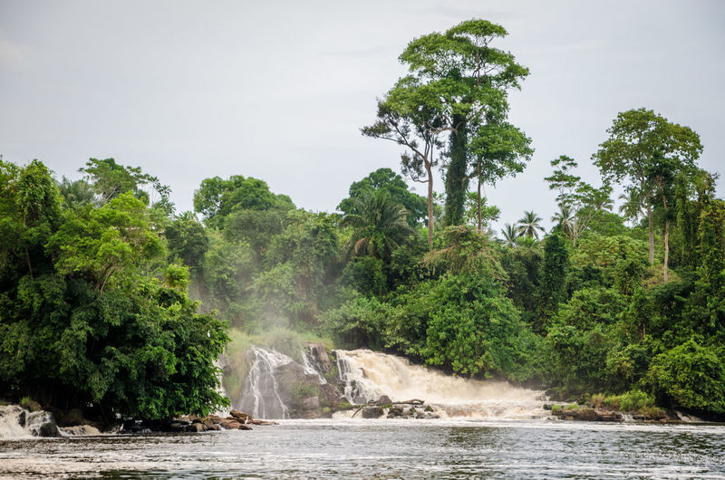 Scenic View Of Kribi Waterfall In Forest Against Sky
