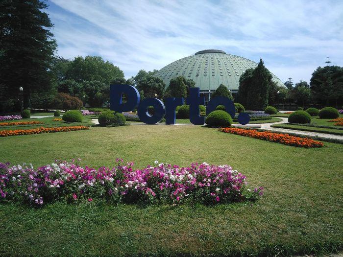 43 Golden Moments | Cristal Palace | Porto | Lovely City | Blue Sky | Green | Trees